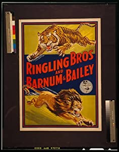 Photo: c1945,Ringling Bros and Barnum & Bailey,Lions,Tigers