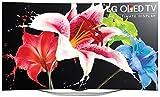 LG Electronics 55EC9300 55-Inch