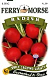 Ferry-Morse 1787 Radish Seeds, Champion (4 Gram Packet), Appliances for Home