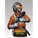 Luke Skywalker Snowspeeder Pilot Star Wars Gentle Giant Deluxe Mini Bust