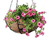 Pepper Agro Medium Coco Fiber with Potting 2 Piece Hanging Planter Set