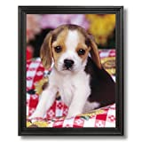 Solid Wood Black Framed Beagle Puppy Dog Kids Room Animal Pictures Art Print