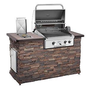 Amazon.com : Weber 57067001 Q 3200 Natural Gas Grill