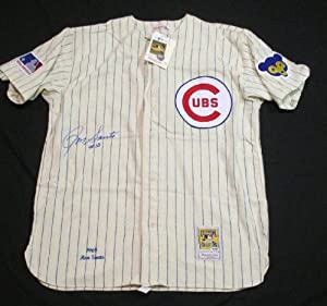 PSA DNA RON SANTO AUTOGRAPHED 1969 CHICAGO CUBS MITCHELL & NESS JERSEY P369233 by PSA/DNA AUTOGRAPHED BASEBALL JERSEY