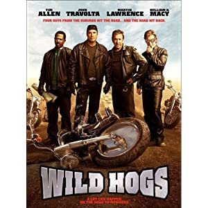Post Thumbnail of Wild Hogs