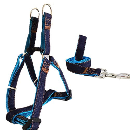 Fairwin Easy Walk Harness for Dogs - Best Denim Dog Harnesses Leashes - Extra Large Medium Small Dog Walking Training Harness ( Blue, 3/4