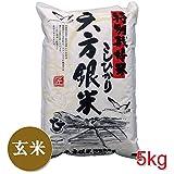 【新米】 六方銀米 玄米 5kg こしひかり 平成28年度産 特別栽培米 コウノトリ舞い降りるお米 兵庫県産