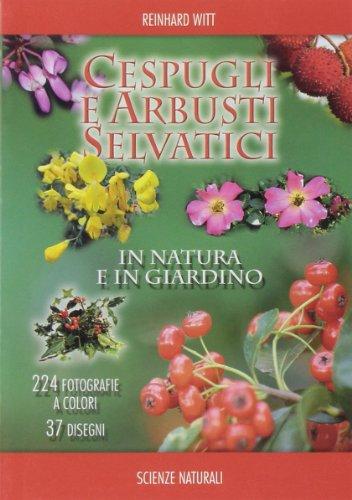 cespugli-e-arbusti-selvatici-in-natura-e-in-giardino