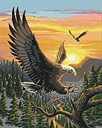 [ New Release ] Diy Oil Painting by Numbers, Paint by Number Kits - Majestic Eagle 16*20 inches - Digital Oil Painting Canvas Wall Art Artwork Landscape Paintings for Home Living Room Office Christmas Decor Decorations Gifts - Diy Paint by Numbers Diy Can