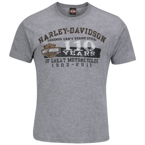 Harley-Davidson Mens 110th Anniversary A Ride To Remember Grey Short Sleeve T-Shirt (Large)