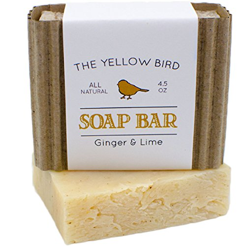 Ginger Lime Bar Soap with Aloe Vera. Antioxidant Sun Repair. Organic & Natural Body Wash. Gentle Face Cleanser for Acne, Eczema, & Blemishes.