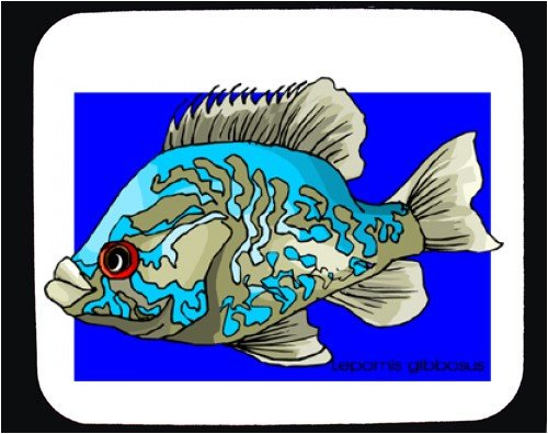 Mouse Pad with blue, multicolored, white, fish - Buy Mouse Pad with blue, multicolored, white, fish - Purchase Mouse Pad with blue, multicolored, white, fish (SHOPZEUS, Office Products, Categories, Office Supplies, Desk Accessories)