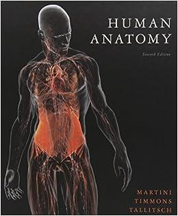 human anatomy martini 8th edition pdf