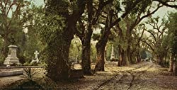 Bonaventure Cemetery, Savannah, Georgia, ca. 1901 - Exceptional Print of a Vintage Photochrom Image from the Library of Congress Collection