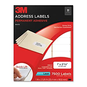 3M Permanent Adhesive Address Labels, 1 x 2.62 Inches, White, 7500 per Pack (3100-C)