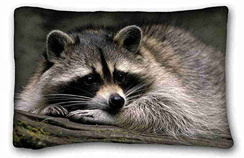 Raccoon Pillow Case<br>20 x 30 Inches