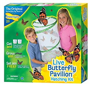 Insect Lore Live Butterfly Pavilion