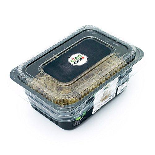 alghe-irish-moss-crude-bio-raw-organic-50g