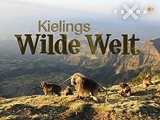 Film Kielings wilde Welt Stream