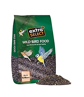 Extra Select Sunflower Seed