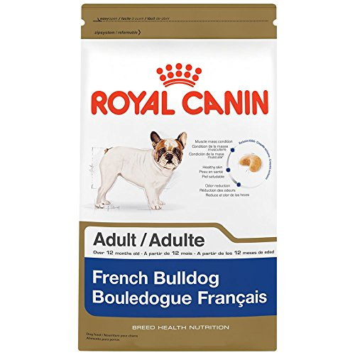 Royal Canin Breed Health Nutrition French Bulldog Adult dry dog food, 17-Pound (Muzzle For Bulldog compare prices)