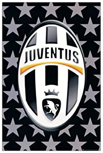 Amazon.com: JUVENTUS - Logo (Decorative Panel 24x36 inches): Posters
