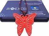 Le Pendentif Papillon