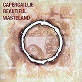 The Beautiful Wasteland