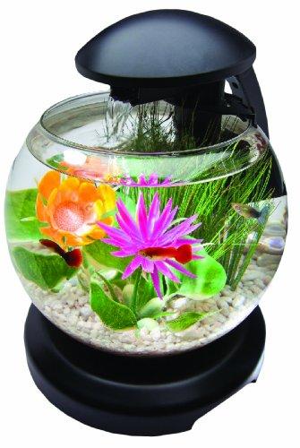 Tetra Led Aquarium Kit