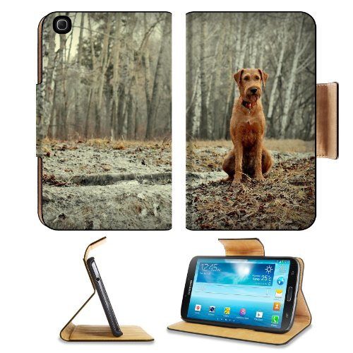 Dog Sit Forest Walk Fall Rain Samsung Galaxy Tab 3 8.0 Flip Case Stand Magnetic Cover Open Ports Customized Made To Order Support Ready Premium Deluxe Pu Leather 8 7/16 Inch (215Mm) X 5 6/8 Inch (145Mm) X 11/16 Inch (17Mm) Liil Galaxy Tab3 Cases Tab_8.0 T