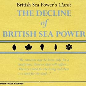 Cover image of song Remember Me by British Sea Power