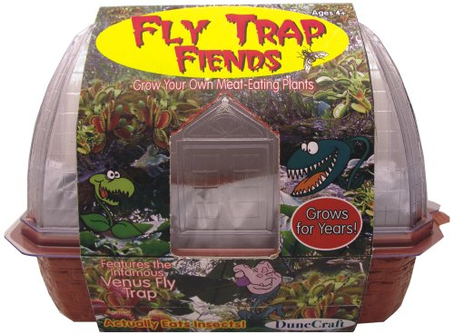Types of Venus Fly Traps Venus Fly Trap Toys Amp