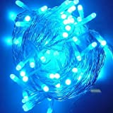 10M 6W 100-LED Blue Light String Lamp Festival Decoration (110V)