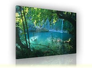 Keilrahmenbild Wasserfall  fertig gerahmt auf Keilrahmen, Qualitätsware Größe 120 x 90cm    Überprüfung und weitere Informationen