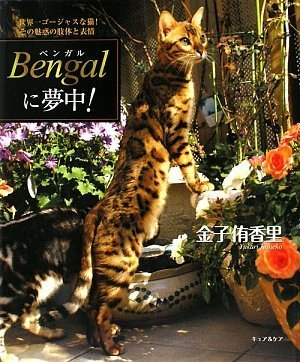 Bengalに夢中!—世界一ゴージャスな猫!その魅惑の肢体と表情