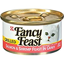 Fancy Feast Grld Salmon & Shm - 24 Pack