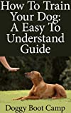 How To Train Your Dog: A Simple And Easy To Understand Guide