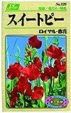 カネコ種苗 草花タネ126 スイートピー ロイヤル 赤花 10袋セット