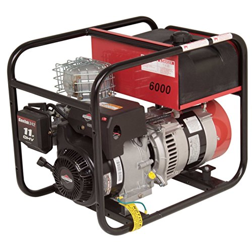Winco DL6000I Industrial DYNA Portable Generator, 6,000W Maximum, 162 lb.