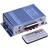 Tsing HIFI Power Stereo Car Amplifier USB/FM/DVD/CD/MP3 Remote Control Digital