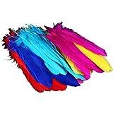 VivReal® 72 Vogelfedern von der Gans, Gänsefedern, 12-20CM lang Flügelfedern Schmuckfeder