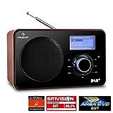 Auna Worldwide Internetradio WLAN Radio mit LCD-Display  schwarz-braun