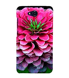 EPICCASE Big pink flower Mobile Back Case Cover For Micromax Canvas Play Q355 (Designer Case)