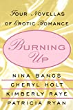 Burning Up: Tales of Erotic Romance (0312311087) by Bangs, Nina