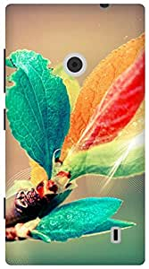 The Racoon Grip blooming branch hard plastic printed back case for Nokia Lumia 520