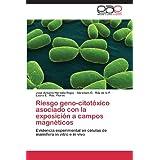 Riesgo Geno-Citotoxico Asociado Con La Exposicion a Campos Magneticos: Evidencia experimental en células de mamífero...