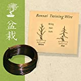 Bonsai Aluminium Training Wire