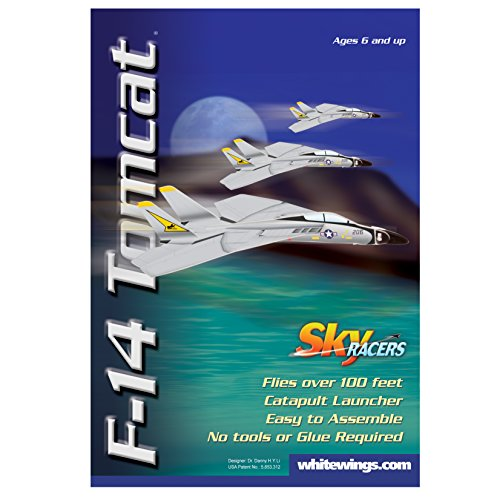 Sky Blue Flight F-14 Tomcat Model Kit