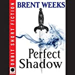 Perfect Shadow: A Night Angel Novella | Brent Weeks