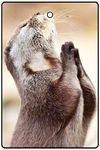 Praying Otter Car Air Freshener back-149063